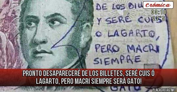 Placas Rojas - PRONTO DESAPARECERÉ DE LOS BILLETES, SERÉ CUIS Ó LAGARTO, PERO MACRI SIEMPRE SERÁ GATO!