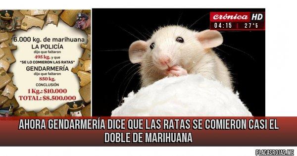 Placas Rojas - Ahora Gendarmería dice que las ratas se comieron casi el doble de marihuana