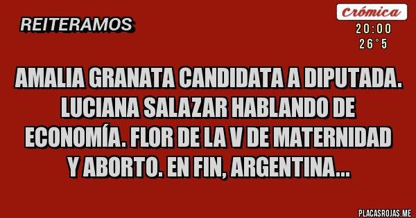 Placas Rojas - Amalia Granata candidata a diputada. Luciana Salazar hablando de economía. Flor de la V de maternidad y aborto. En fin, Argentina...