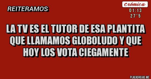 Placas Rojas - La tv es el tutor de esa plantita que llamamos globoludo y que hoy los vota ciegamente