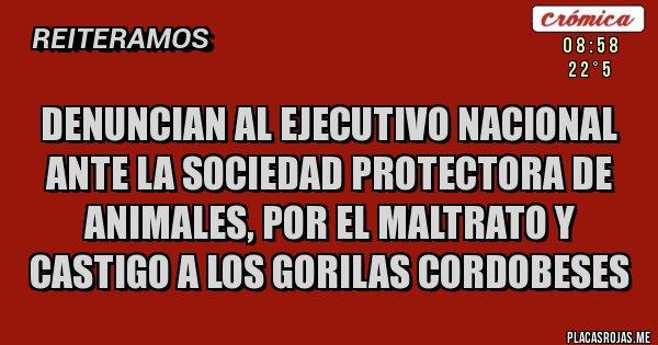 Placas Rojas - Denuncian al ejecutivo nacional ante la sociedad protectora de animales, por el maltrato y castigo a los gorilas cordobeses
