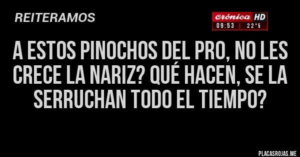 Placas Rojas - A estos pinochos del Pro, no les crece la nariz? Qué hacen, se la serruchan todo el tiempo?